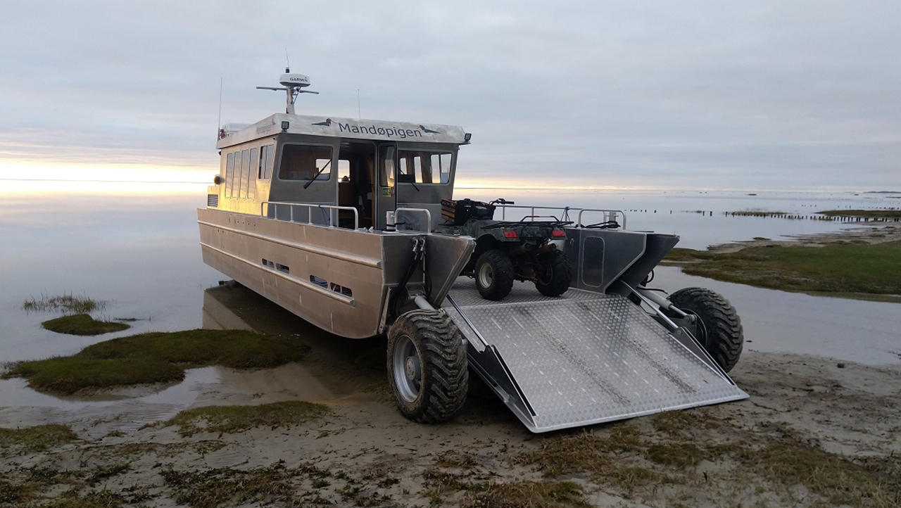 Survey Boat